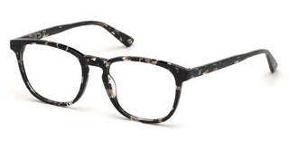 Web Eyewear WE5293 055