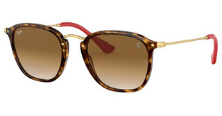 Ray-Ban RB2448NM F60351